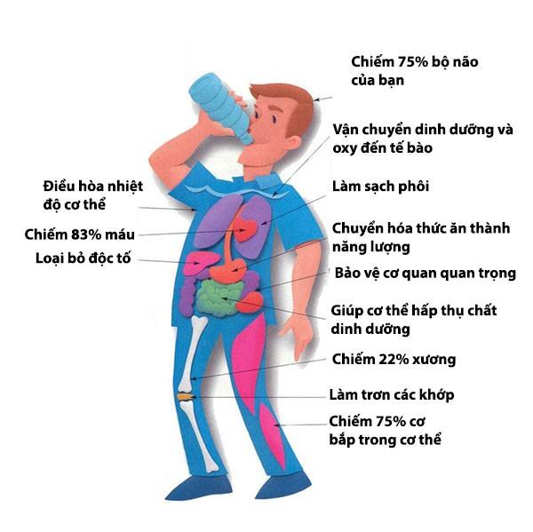 Nên chọn Máy lọc nước nào tốt cho sức khỏe? - Karofi Thông Minh